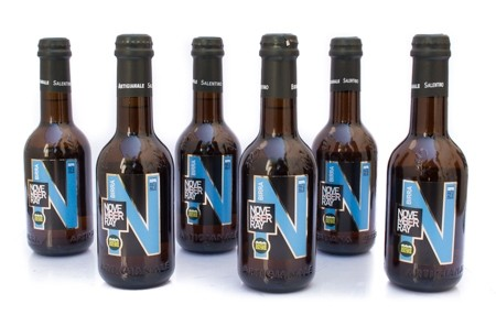 6 Bottiglie di Birra November Ray 33 cl